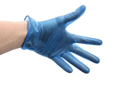 Blue Vinyl Powder Free Glove Large **